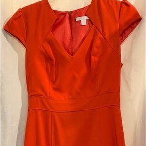 New York & Co. Orange Sheath Dress Size 2